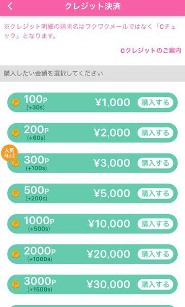 【ポイント購入1】クレジットカード決済